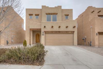 Rio Rancho Single Family Home For Sale: 4237 High Mesa Road SE