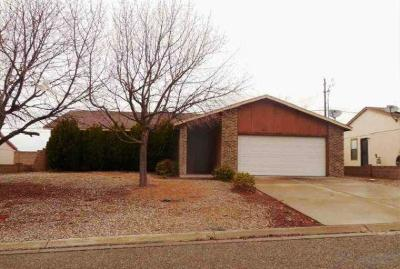 Sandoval County Single Family Home For Sale: 1513 Gadwall Road NE