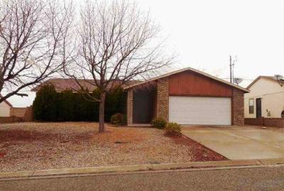 Rio Rancho Single Family Home For Sale: 1513 Gadwall Road NE