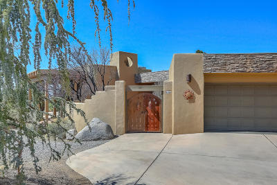 Sandia Heights Single Family Home For Sale: 678 Black Hawk Drive NE