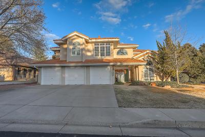 Albuquerque Single Family Home For Sale: 6500 Prairie Dunes Street NE