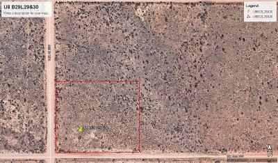 Rio Rancho Residential Lots & Land For Sale: 1309 6th Ave (U8b32l29or30) NW