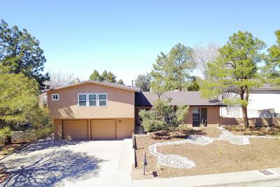 Albuquerque Single Family Home For Sale: 7921 Charger Trail NE