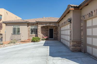 Albuquerque Single Family Home For Sale: 9116 Wilshire Court NE