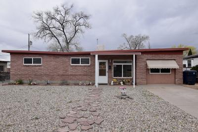Bernalillo County Single Family Home For Sale: 1119 Elizabeth Street NE