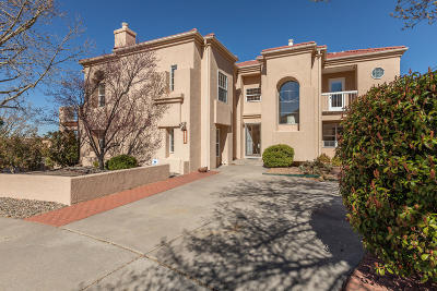 Albuquerque Single Family Home For Sale: 14000 Mesita Cliff Road