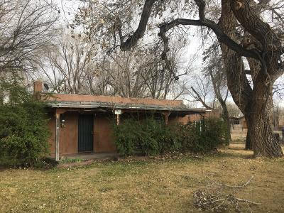 Single Family Home For Sale: 9000 Rio Grande Boulevard NW