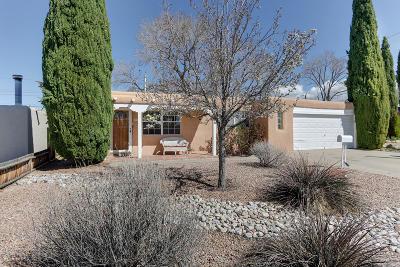Albuquerque Single Family Home For Sale: 9913 Salem Road NE