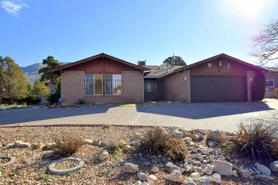 Albuquerque Single Family Home For Sale: 12601 Indian School Road NE