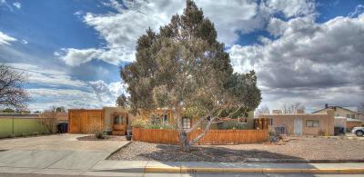 Albuquerque Single Family Home For Sale: 5324 Palo Duro Avenue NE
