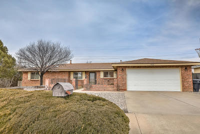 Albuquerque Single Family Home For Sale: 8317 Cherry Hills Road NE