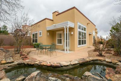 Albuquerque Single Family Home For Sale: 5632 Bosque Vista Drive