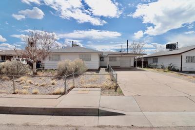 Albuquerque Single Family Home For Sale: 3808 Delamar Avenue NE