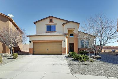 Rio Rancho Single Family Home For Sale: 1328 Desert Paintbrush Loop NE