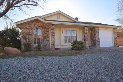 Albuquerque Single Family Home For Sale: 712 Sandpiper Drive SW