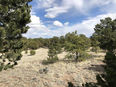 Catron County Residential Lots & Land For Sale: 133 Homestead Trail