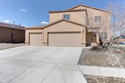 Albuquerque Single Family Home For Sale: 3125 Caliber Road SW