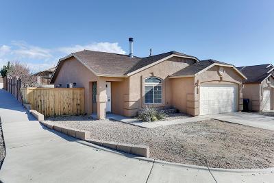 Albuquerque Single Family Home For Sale: 6143 Ursa Avenue NW