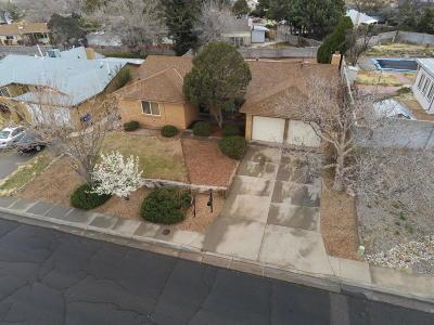 Albuquerque Single Family Home For Sale: 4623 Jamaica Drive NE