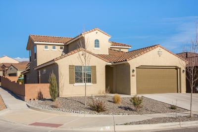 Rio Rancho Single Family Home For Sale: 1220 Walsh Street SE