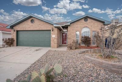 Albuquerque Single Family Home For Sale: 9305 Prickly Pear Street NW