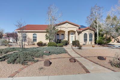 Rio Rancho Single Family Home For Sale: 3019 Ashkirk Place SE