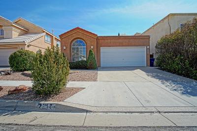 Albuquerque Single Family Home For Sale: 7212 Laster Avenue NE