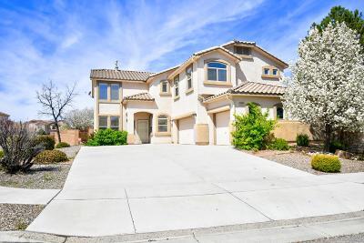 Albuquerque Single Family Home For Sale: 10431 Venticello Drive NW