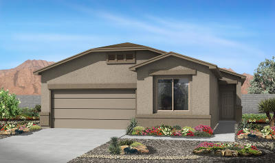 Rio Rancho Single Family Home For Sale: 4103 Summit Park Road NE