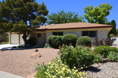 Albuquerque Single Family Home For Sale: 8805 Delamar Drive NE