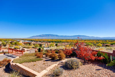 Bernalillo County Residential Lots & Land For Sale: 3815 Mourning Dove Place NW