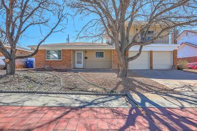 Albuquerque Single Family Home For Sale: 8508 James Avenue NE