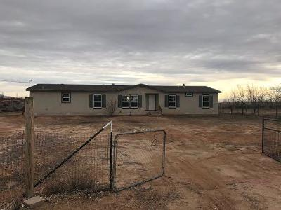 Los Lunas Single Family Home For Sale: 166 High Mesa Road