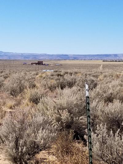 Los Lunas Residential Lots & Land For Sale: Hormiga Court #Lot 58A