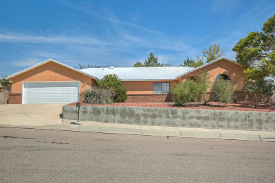 Albuquerque NM Single Family Home For Sale: $250,000