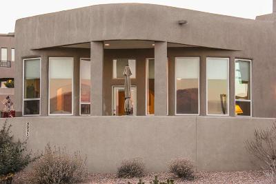 Albuquerque Single Family Home For Sale: 3939 Oxbow Village Lane NW