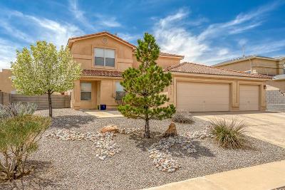 Rio Rancho Single Family Home For Sale: 4938 Kokopelli Drive NE