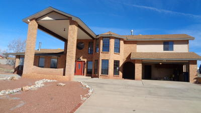 Valencia County Single Family Home For Sale: 1407 Valley View Drive SW