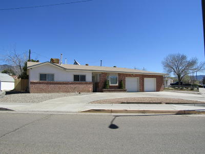 Albuquerque Single Family Home For Sale: 11401 Freeway Place NE