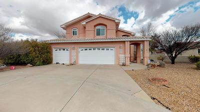 Rio Rancho Single Family Home For Sale: 4003 Saint Andrews Drive SE