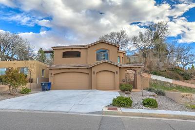 Single Family Home For Sale: 1104 Roma Avenue NE