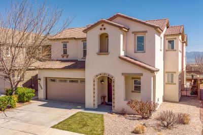 Albuquerque Single Family Home For Sale: 6808 Vista Del Sol Drive NW