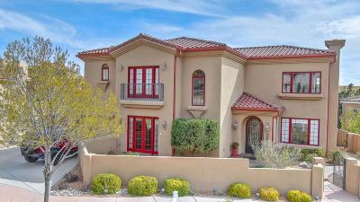Albuquerque Single Family Home For Sale: 12088 Irish Mist Road NE
