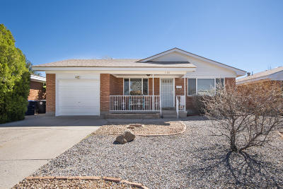 Albuquerque Single Family Home For Sale: 1108 Indiana Street SE