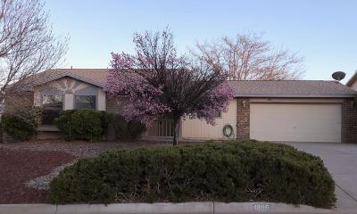 Albuquerque, Rio Rancho Single Family Home For Sale: 1896 Clearwater Loop NE