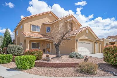 Albuquerque Single Family Home For Sale: 9712 Bajada Drive NW