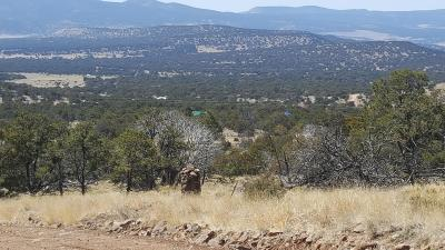 Catron County Residential Lots & Land For Sale: 285 Northern Trail
