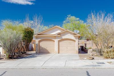 Albuquerque Single Family Home For Sale: 6301 Sonrisa Place NE