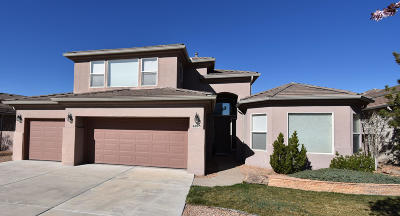 High Desert Single Family Home For Sale: 6005 Silver Leaf Trail NE