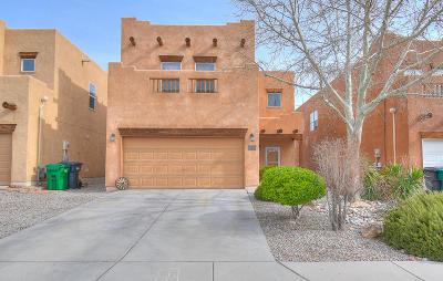 Albuquerque, Rio Rancho Single Family Home For Sale: 4241 High Mesa Road SE